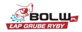 Bolw Logo