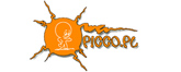 Picco.pl Logo
